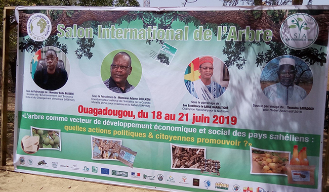 "SIA 2019: "" S'il n'y a pas d'arbres, il n'y a pas d'hommes "" dixit Yacouba Savadogo"