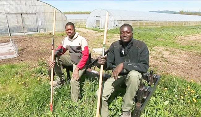 VALDOIE: Deux jeunes Burkinabè en formation au lycée agricole.