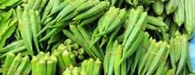 Recette: La sauce aux gombos ou la sauce gombo