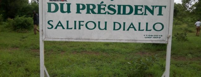 """An 2 DECES DE SALIFOU DIALLO: Le MPP """"ressuscite"""" Gorba à travers des plants"""