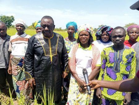 Bénin : le gouvernement annonce la production d'un million de tonnes de riz d'ici 2022