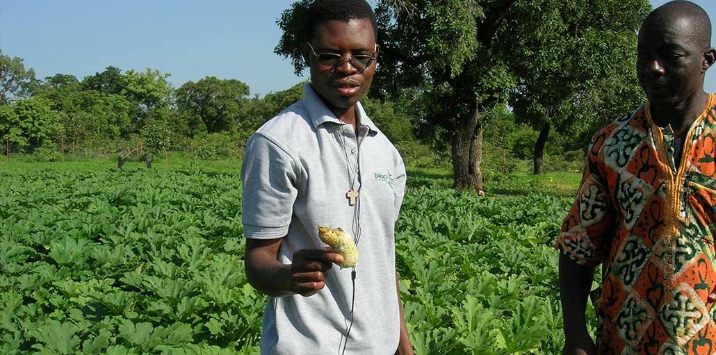 Claude Arsène Savadogo, BIOPROTECT : « Nous voulons apporter une réponse qui permet d'augmenter et de sécuriser les rendements agricoles tout en préservant l'homme et l'environnement »