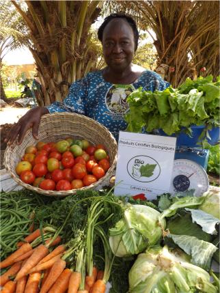 Agriculture Biologique : L'association La Saisonnière vend la santé et le bien être dans le plat des consommateurs Burkinabè