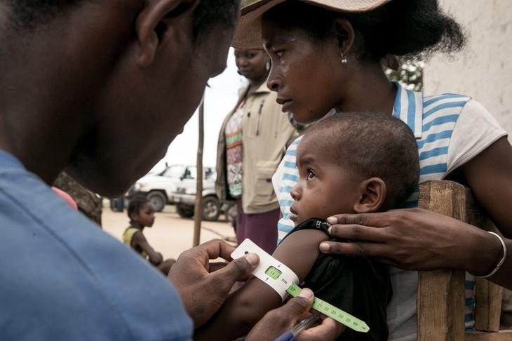 Afrique: 45 millions de personnes menacées par la famine, selon l'ONU