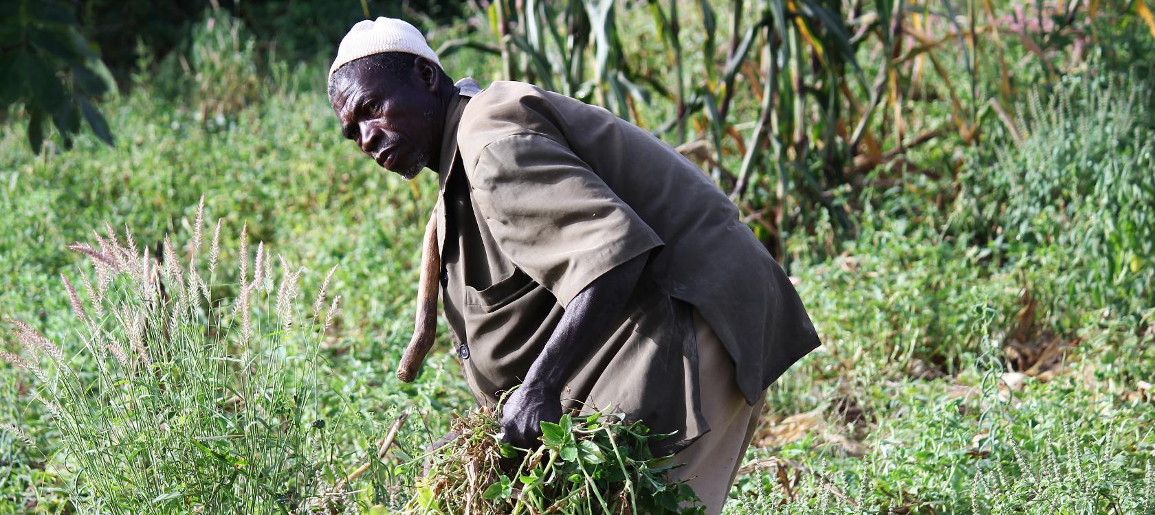Burkina Faso :             Bientôt une carte professionnelle pour les agriculteurs