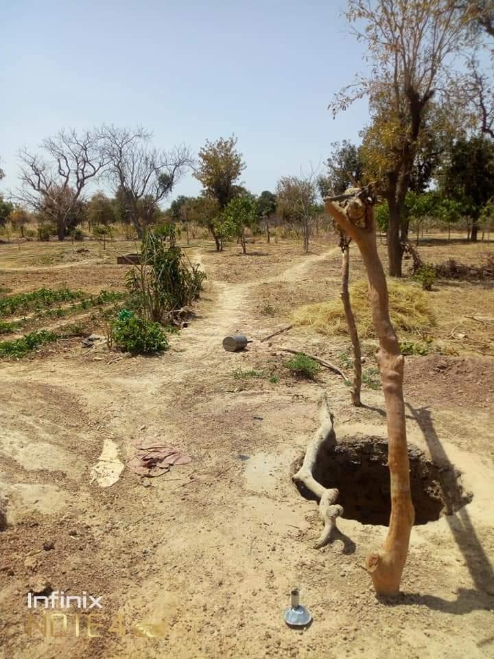 Burkina Faso :                    Les Agro-pasteurs de Rissi sont à sec