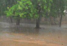 Prévision:                              Une saison humide attendue en 2020 dans la zone soudano sahélienne
