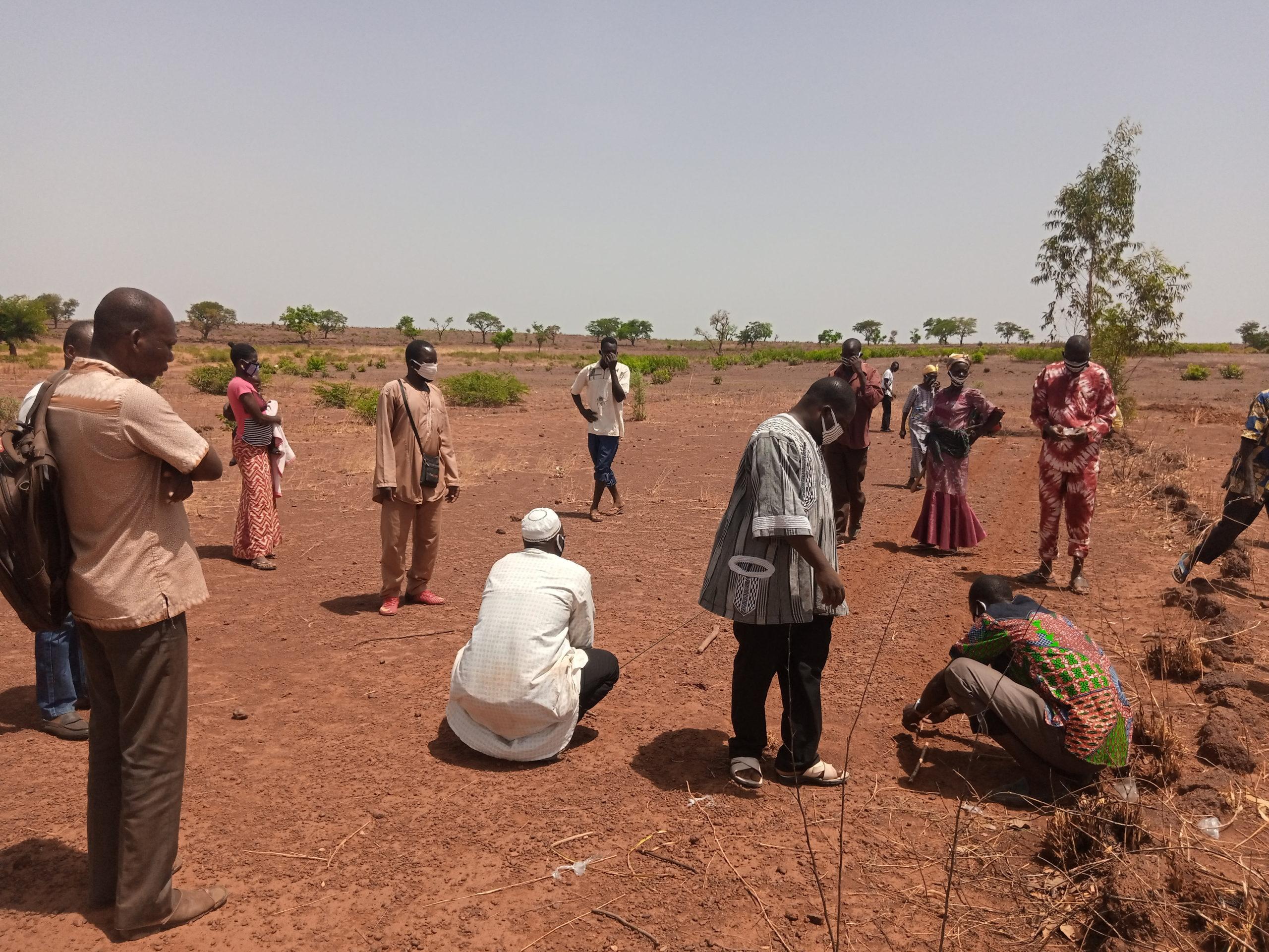 Burkina Faso:Agriculture:                             Des producteurs du Centre-ouest apprennent à restaurer naturellement leurs sols