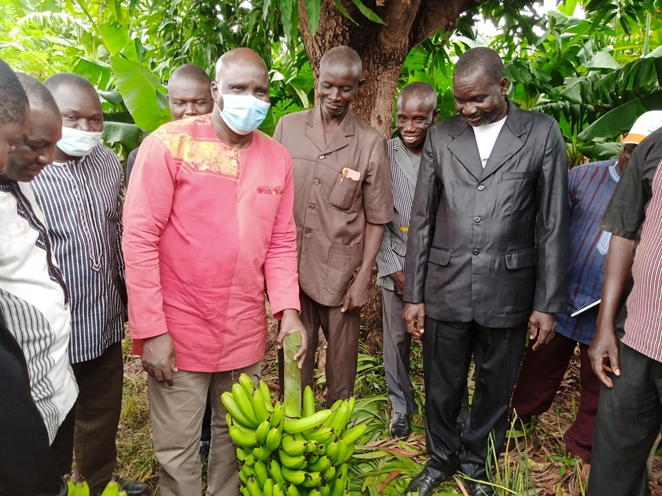 Burkina Faso : Production de Banane : La campagne officiellement lancée