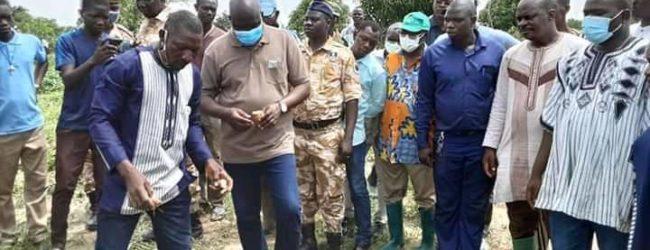 Campagne agricole région du Centre-Ouest:      l'exploitation agricole de Anasse Yago qui vaut 37 000 000 de FCFA