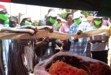 16 ème édition de la fête du Citumu: Faire de la chenille de karité un label de la ville de Bobo-Dioulasso