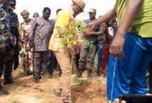 Campagne de reboisement << Ouaga la verte>>: 1200 plants mis sous terre